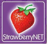 strawberrynet אתר לרכישת מוצרי איפור אונליין