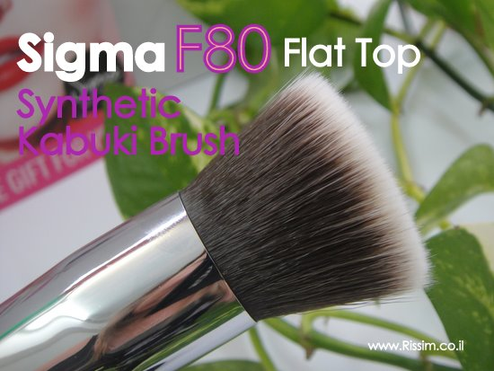 Sigma F80 Brush