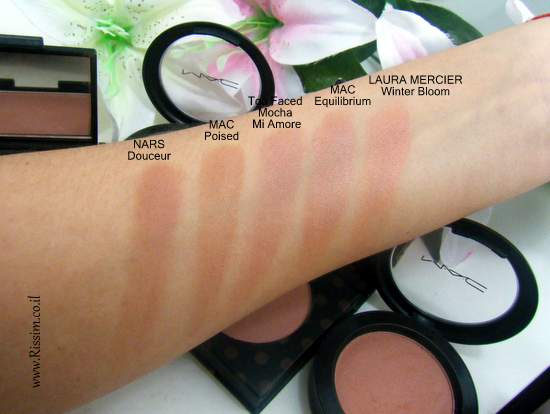 MAC poised blush swatches comparison